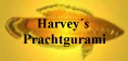 Harvey´s